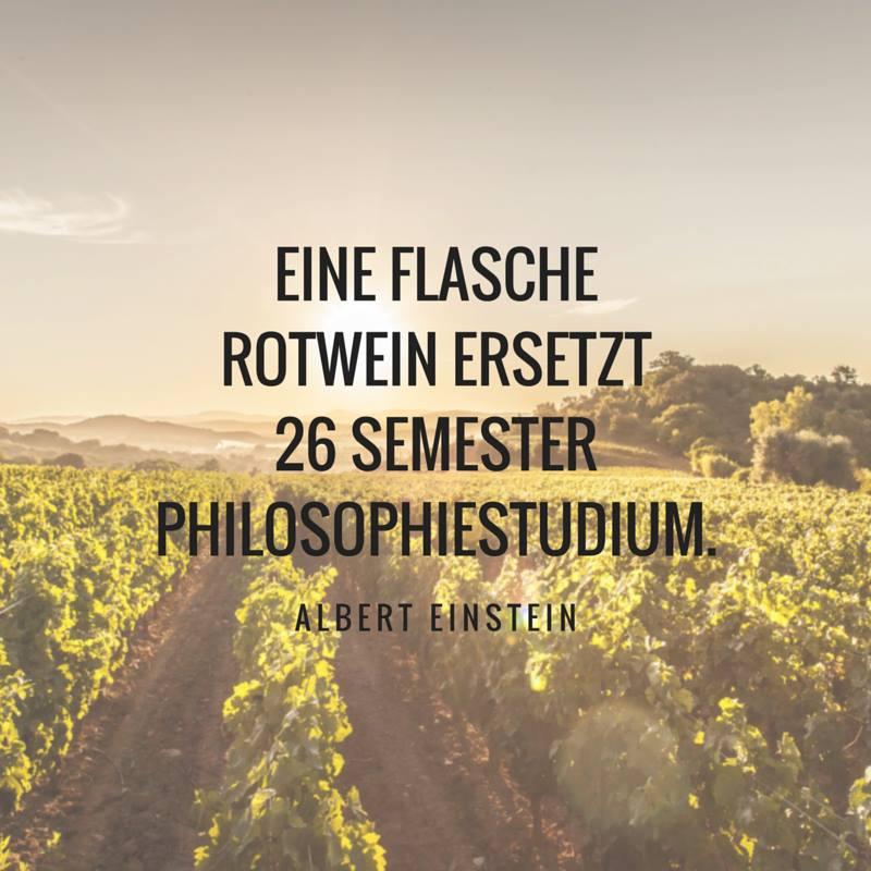 20160628 Eine Flasche Rotwein ersetzt 20 Semester Philosophiestudium