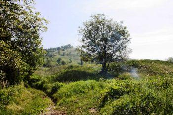 2009_rumaenien16