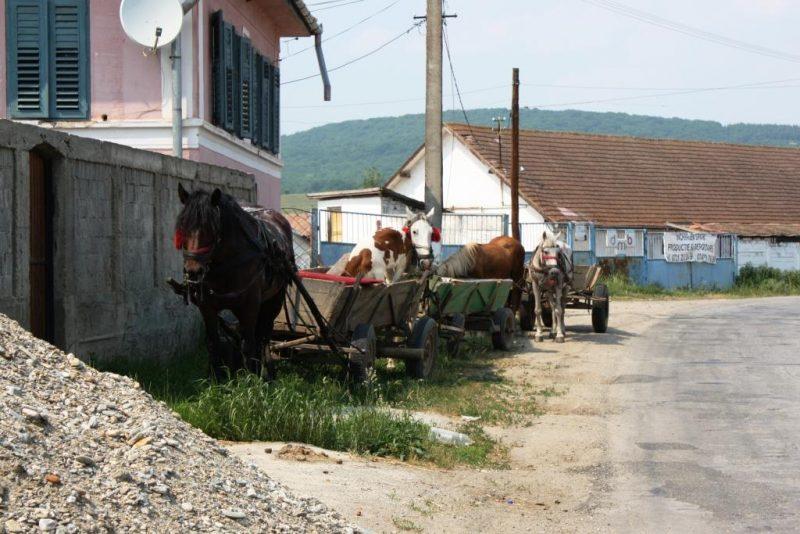 2009_rumaenien30