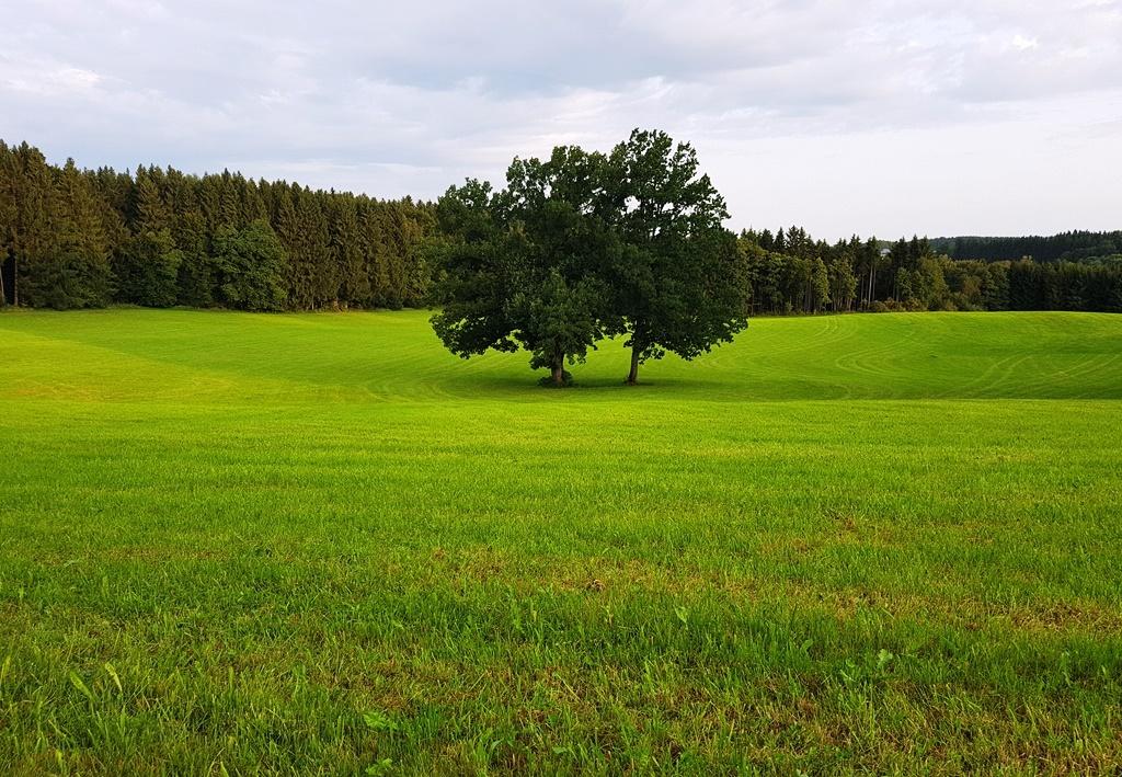 Deutschland kann so schön sein …