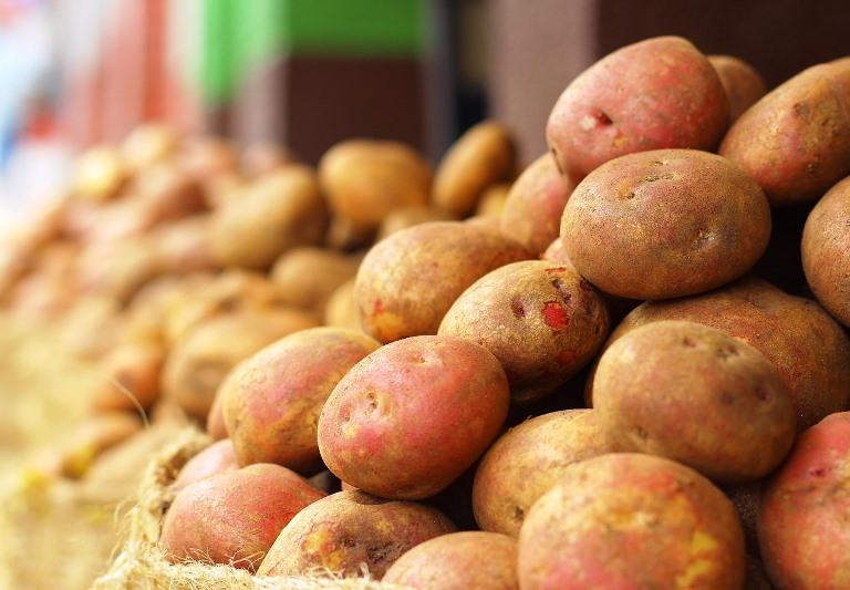 Marginalie 42: Räudige Kartoffeln