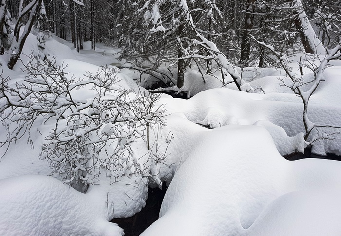Arber, Arbersee, Bayrischer Wald, Winter
